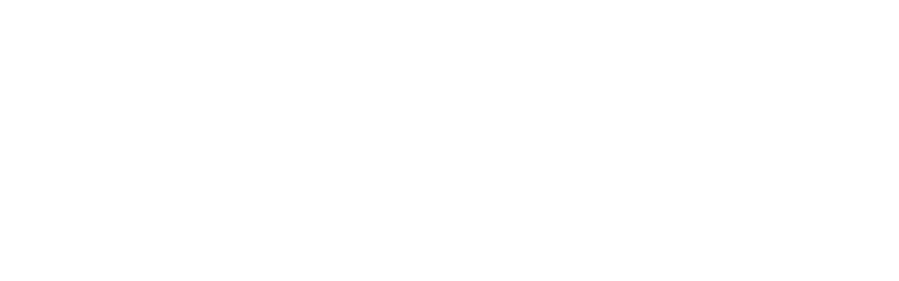 vcti horizontal logo 1 white transparent  azo font
